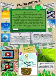 photosynthesis biology chemistry cycle en life oxygen photosynthesis processes science glogster edu interactive multimedia posters