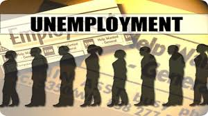 punjab economic report raises concern over youth unemployment  punjab economic report raises concern over youth unemployment report