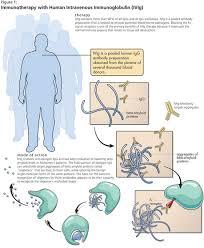 Ivig Reaction Chart Ivig Is A Pooled Human Immunoglobulin G Igg Preparation
