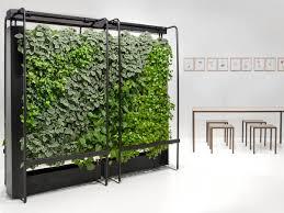 office pot plants. how do plants clean the air office pot