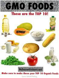 gmo foods top 10 gmo foods