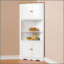 Tall Pantry Storage Cabinets With Doors Download Page Kitchen Wood