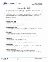 executive business plan template short business plan template managementummaryample financial film