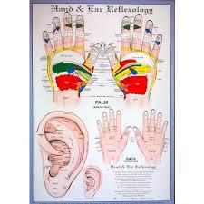 Cranial Reflexology Chart Ear Acupressure Hand Reflexology