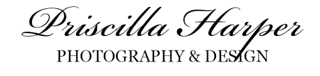 Photography | Priscilla Harper Photography & Design