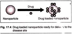 essay on biotechnology and health care essay 8 role of nanotechnology in drug delivery