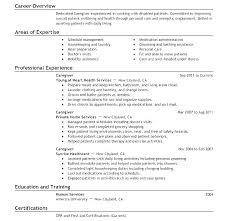 Resume Template With Objective Human Services Resume Templates Social Services Resume Template