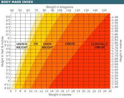Bmi Weigh How To Calculate Bmi Are You Overweight Caloriebee