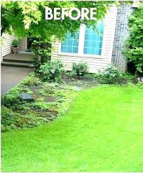 do it yourself landscape ideas design interesting simple landscaping around trees pictures yourse