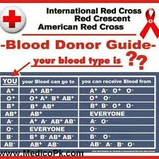 Donate Blood Blood Drive Blood Donation Blood Drive