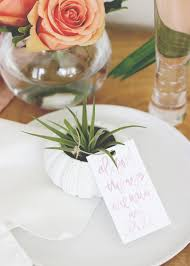 DIY Air Plant in Sea Urchin Tea Light Holder | Wedding Favor | Kate Aspen |