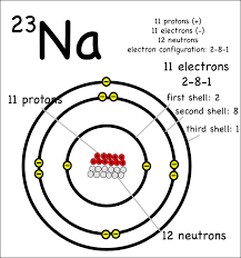 Diagram Of An Atom Drawing Atoms Montessori Muddle