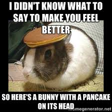Image result for funny feel better pics