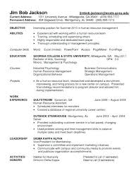 Internship Resume Objective Megakravmaga Com