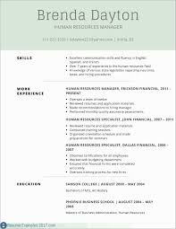 Beautiful Examples Of Resumes 2017 Resume Ideas