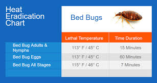 To Kill Bed Bugs Low Temperature To Kill Bed Bugs