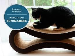 insider picks cat bed 4x3