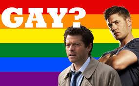 Resultado de imagem para imagem: gay