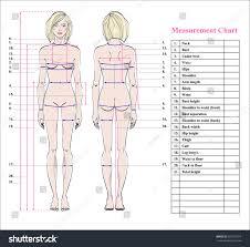 Woman Body Measurement Chart Scheme Stock Photo 505775314