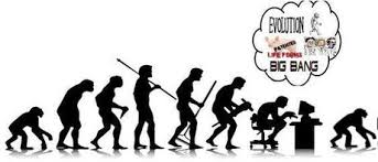evolution essay human evolution essay