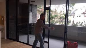 pet door insert installed in double