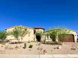 since the 1980s tucsonans have replaced their green lawns with decomposed granite and opted for plants like palo verde trees and cacti which can endure long