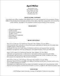Resume For Loan Officer Rome Fontanacountryinn Com