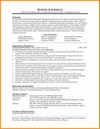 It Consultant Resume Resume Summary Example Mind Mapping Software