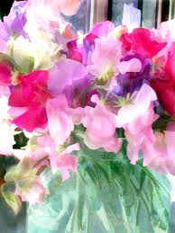 sweetpea painting mixed sweet peas in a jar by elaine plesser