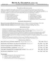 Sample Cv Template Cv Template Veterinary Student 2 Cv Template Sample Resume