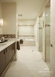 bathroom design chicago. Serene Contemporary Bathroom In Earth Tones Design Chicago