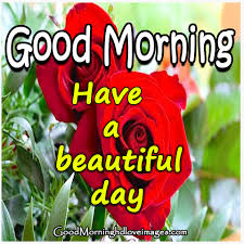 fresh good morning images hd free