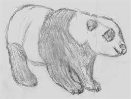 Cool Easy Animal Drawings Wild Animal Sketches Easy Cypress