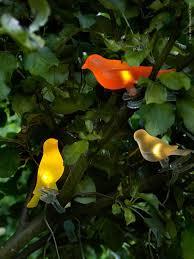 Tuinverlichting Dat Kan Leuker Tuin En Balkon