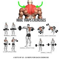 Back Workout Chart Step By Step Huge Traps Workout Step By Step Tutorial Traps Workout