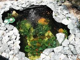 Водоемы пруд с рыбой Какой тип водоема пруда лучше Как  Водоемы пруды с рыбой