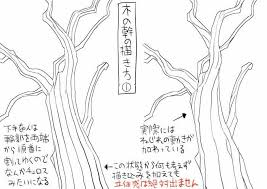 篠房六郎 On Pen Texture 木 書き方木イラスト木の幹