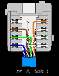 cat 5e wiring diagram wall jack gallery wiring diagram sample cat 5 wiring diagram wall jack australia at Cat 5 Wiring Diagram Wall Jack
