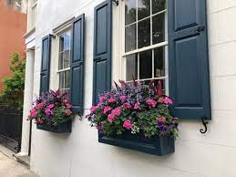 Great savings & free delivery / collection on many items. 24 Window Box Flower Ideas What Flowers To Plant In Window Boxes Apartment Therapy
