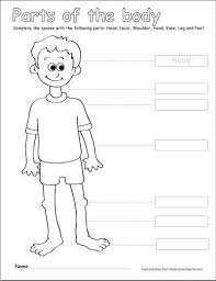 Human Body Coloring Pages Unique Fresh Free Printable Human Anatomy
