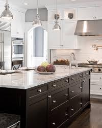 Dark Kitchen Cabinets With White Appliances Home Design Ideas