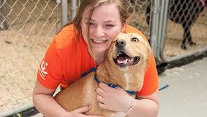 Volunteer Opportunities New York   Best Friends Animal Society ...