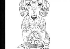 Awesome Its A Colourful World Dachshund Coloring Pages Free