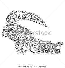 Small Picture Crocodile Stock Photos Royalty Free Images Vectors Shutterstock