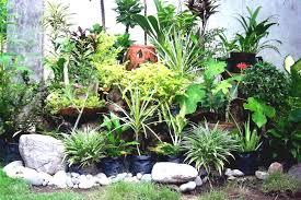 interior rock landscaping ideas. Small Rock Garden Ideas Rocks In Japanese Gardens Buiding Backyard Designs Landscaping Design Patio That Will Interior G