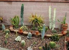 Small Picture 218 best Garden images on Pinterest Gardening Garden ideas and