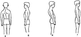 Классный час по теме Осанка стройная спина