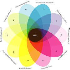 Venn Diagram Copy Venn Diagram Of The Shared Orthologous Gene Families Among 10
