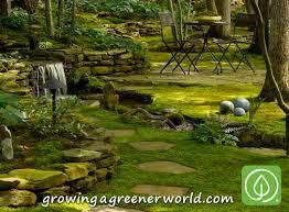 Episode 319: Moss Gardens - Growing A Greener World®