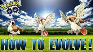 HOW TO EVOLVE YOUR POKEMON! PIDGEY EVOLUTION - POKEMON GO - YouTube